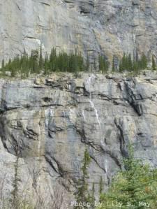Weeping Wall, Icefield Parkway, Alberta, 2012