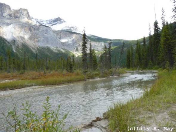 River near Emerald Lake