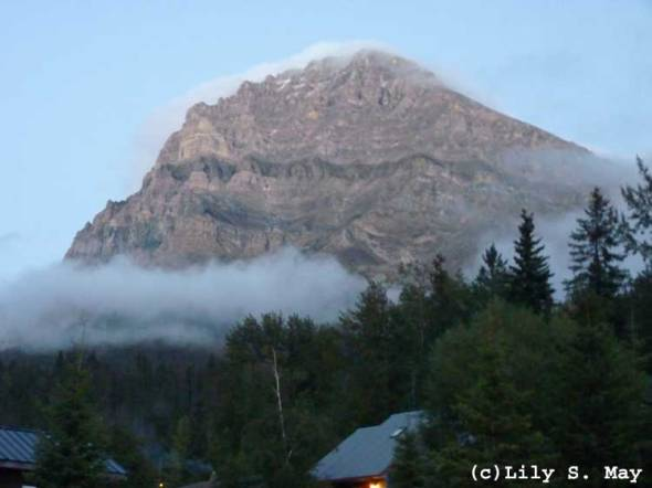 Mt. Stephen