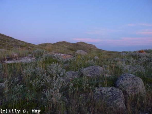 Grasslands National Park, Nightfall