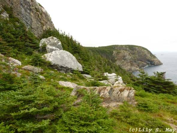 East Coast Trail, Newfoundland