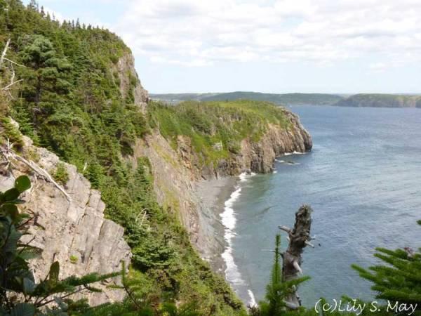Newfoundland Ocean View