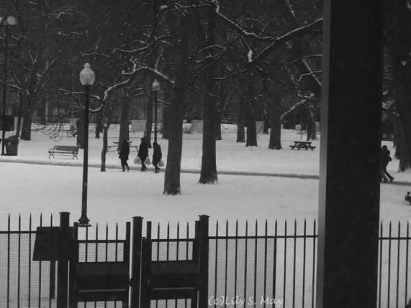 Toronto Grange Park