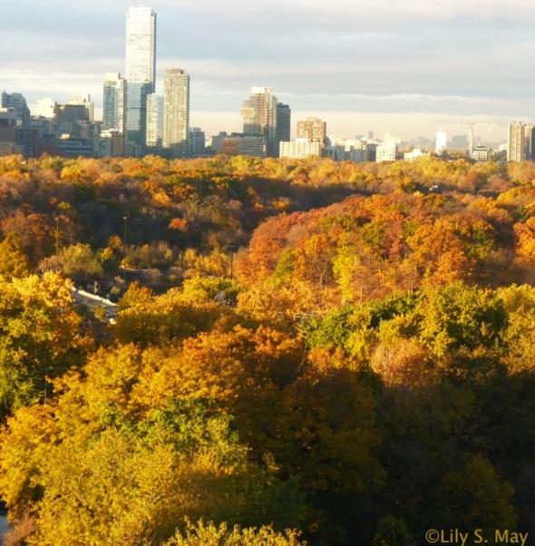 Toronto, Canada, Oct 30, 2014.